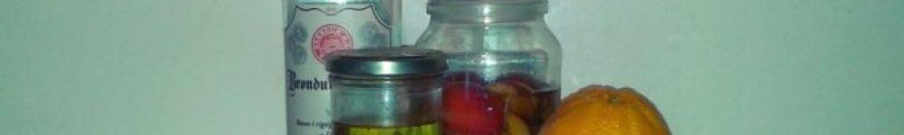 Julensnaps-med-æble-appelsin-og-citron-670x503