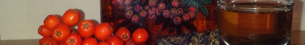 Julesnaps-med-enebær-og-rønnebær